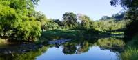 Lush landscapes near Pombei on the New Caledonia 'Kanak Villages Hike'